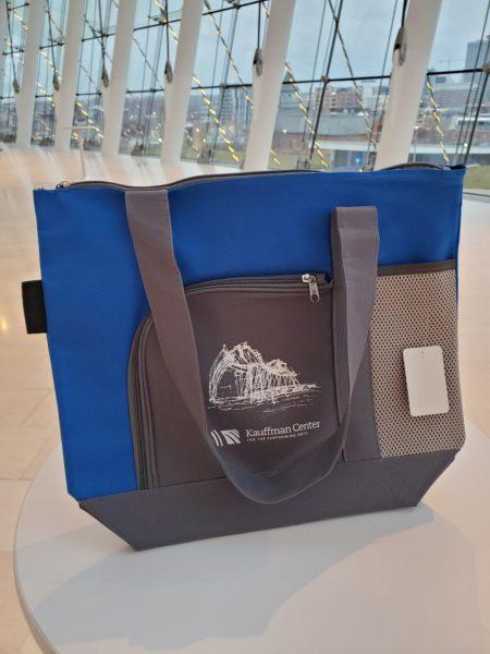 Gray and Blue Bag