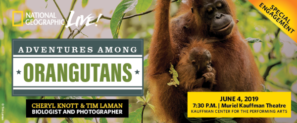 National Geographic Live - Cheryl Knott and Time Laman - Adventures Among Orangutans - June 4, 2019 - at the Kauffman Center for the Performing Arts