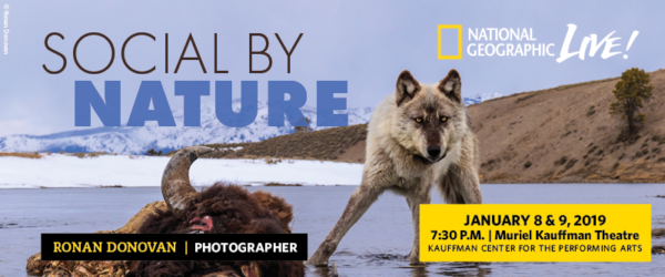 National Geographic Live - Ronan Donovan - Social By Nature - Jan. 8 and 9, 2019 - at the Kauffman Center for the Performing Arts