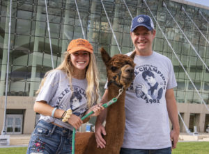 Napoleon Dynamite Alpaca  Photo