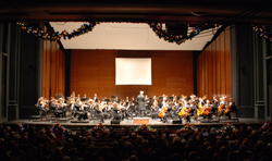Symphony and audience