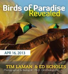 Tim Laman & Ed Scholes